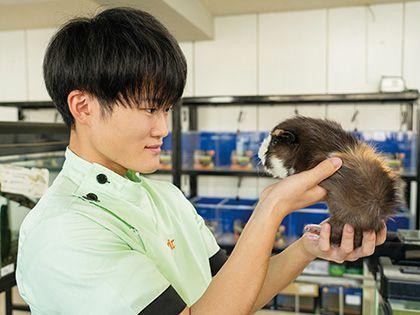 【来校型】動物看護科 エキゾの気持ち のイメージ