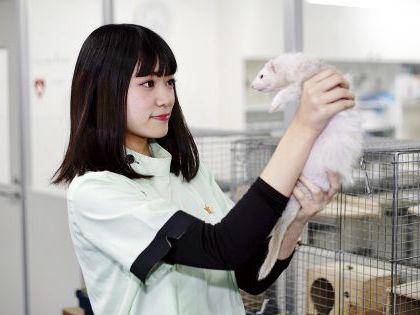 ペット総合科 ペットアドバイザーコース 小動物について学ぼう!! のイメージ