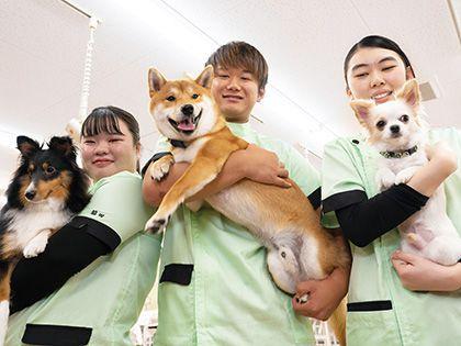 【来校型】ペット総合科 ペットアドバイザーコース 犬種クイズ! のイメージ