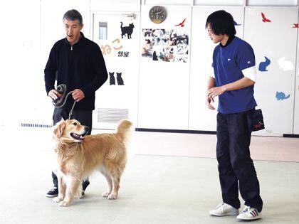 ペット総合科 ドッグトレーナーコース ドッグトレーナー体験(小泉先生) のイメージ