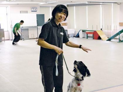 ペット総合科 ドッグトレーナーコース ワンちゃんのしつけ体験教室【仲川先生】 のイメージ
